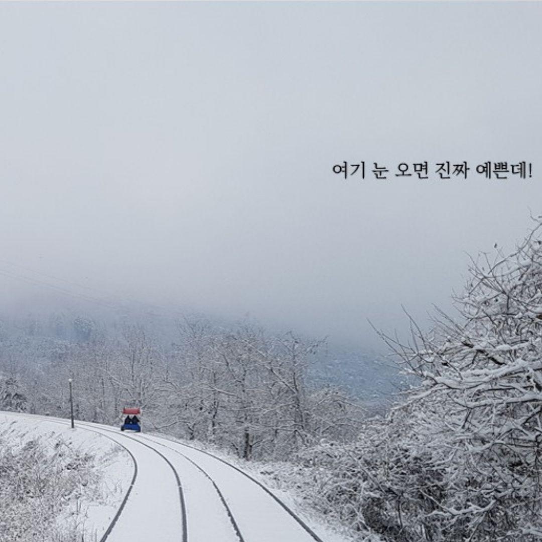 gangchon-rail-park-winter