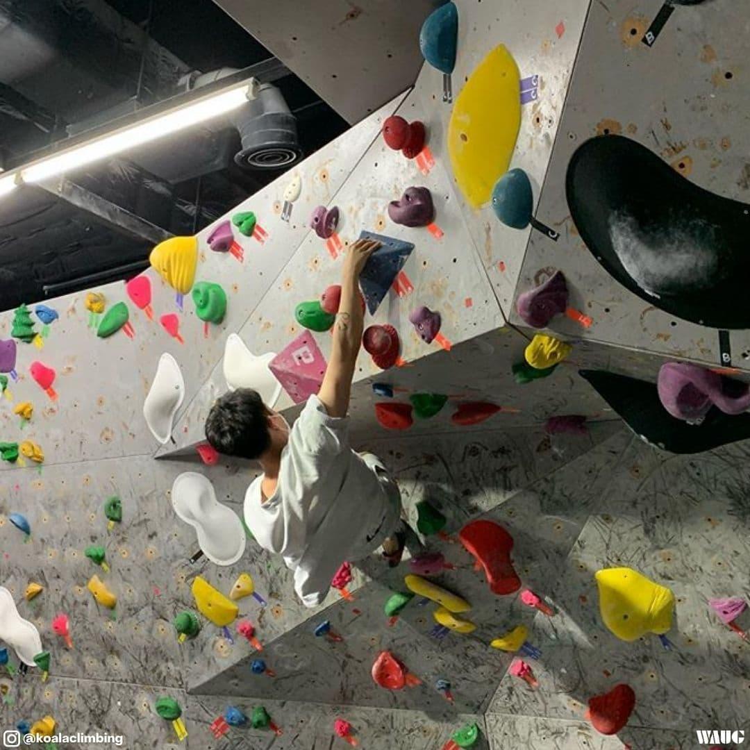 best-bouldering-gym-korea
