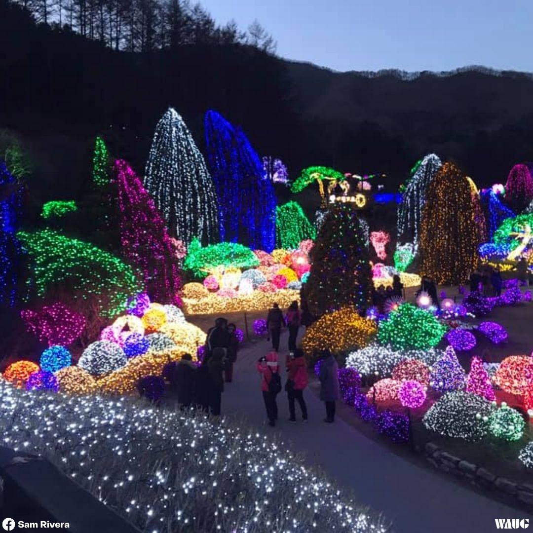 things-to-do-christmas-korea-garden-of-morning-calm