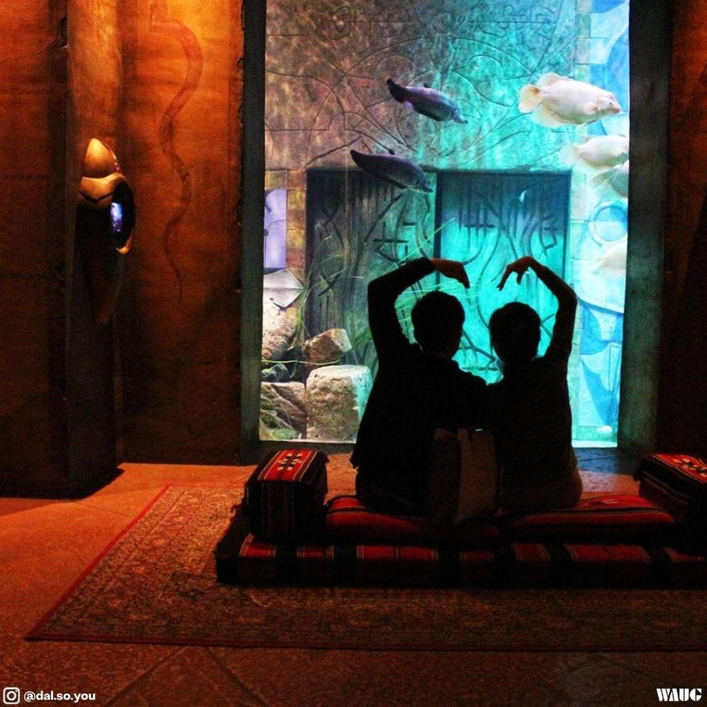 dubai aquarium & underwater zoo ticket price