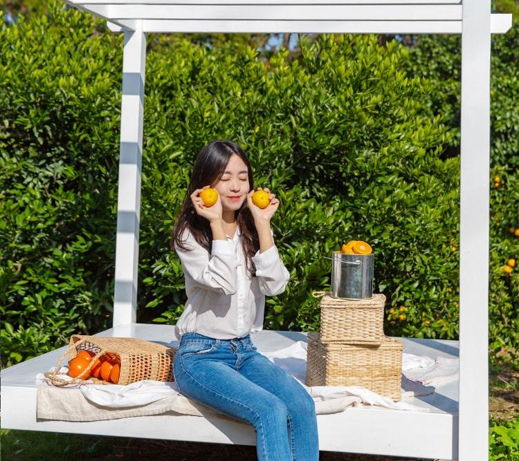 jeju fruit picking