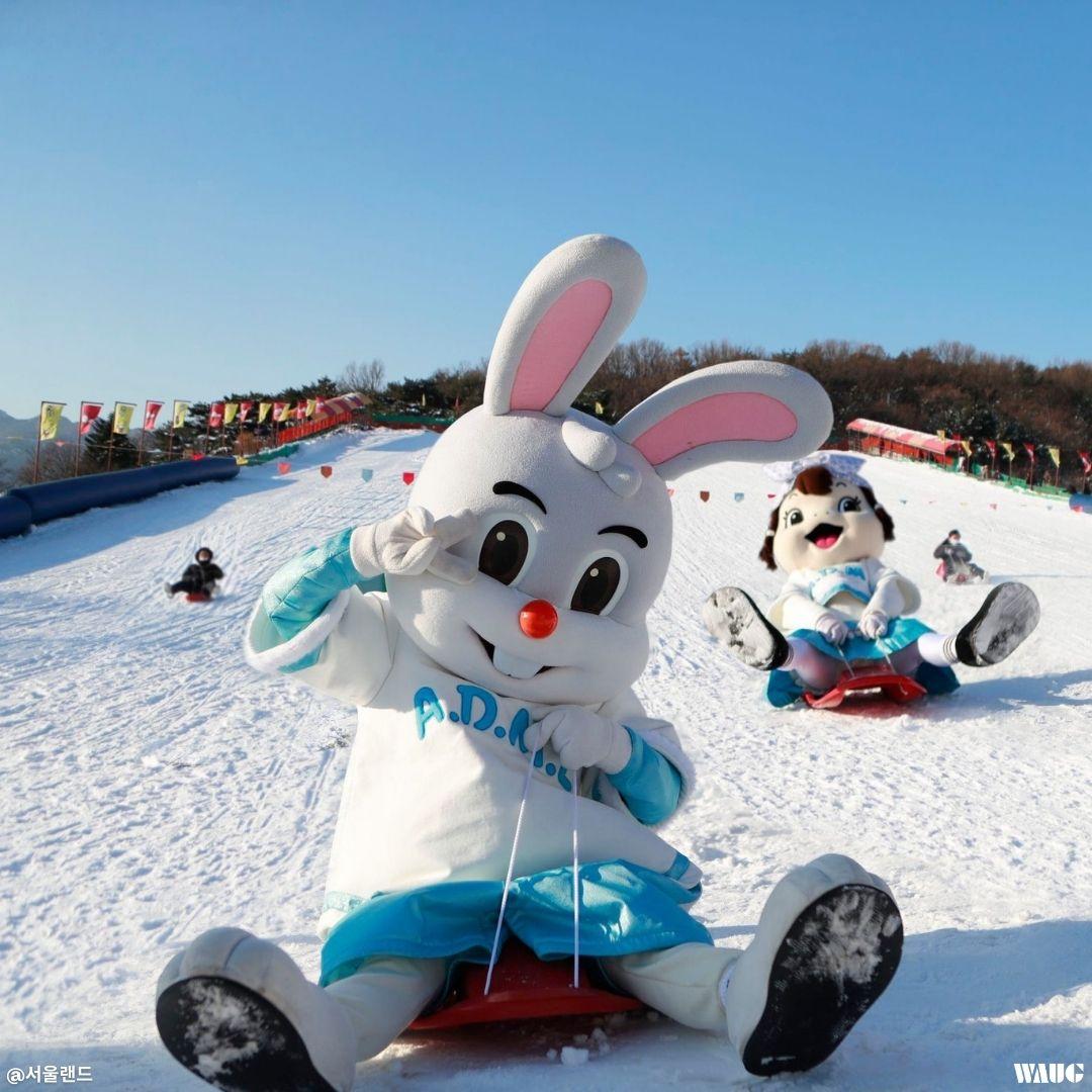 seoul-land-snow-sled-park-snowy-fun-park-1-min