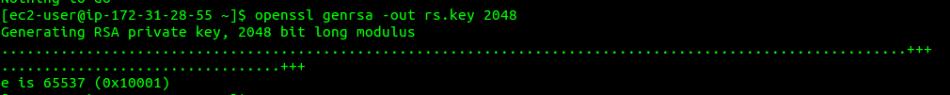 Install own SSL on Amazon Machine Image (AMI)