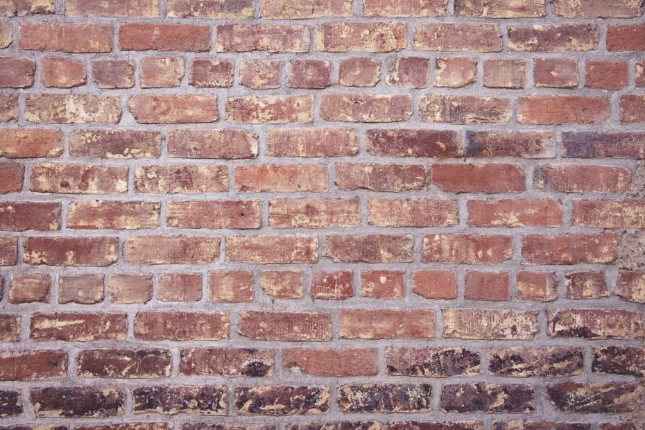 Weight loss plateau brick wall