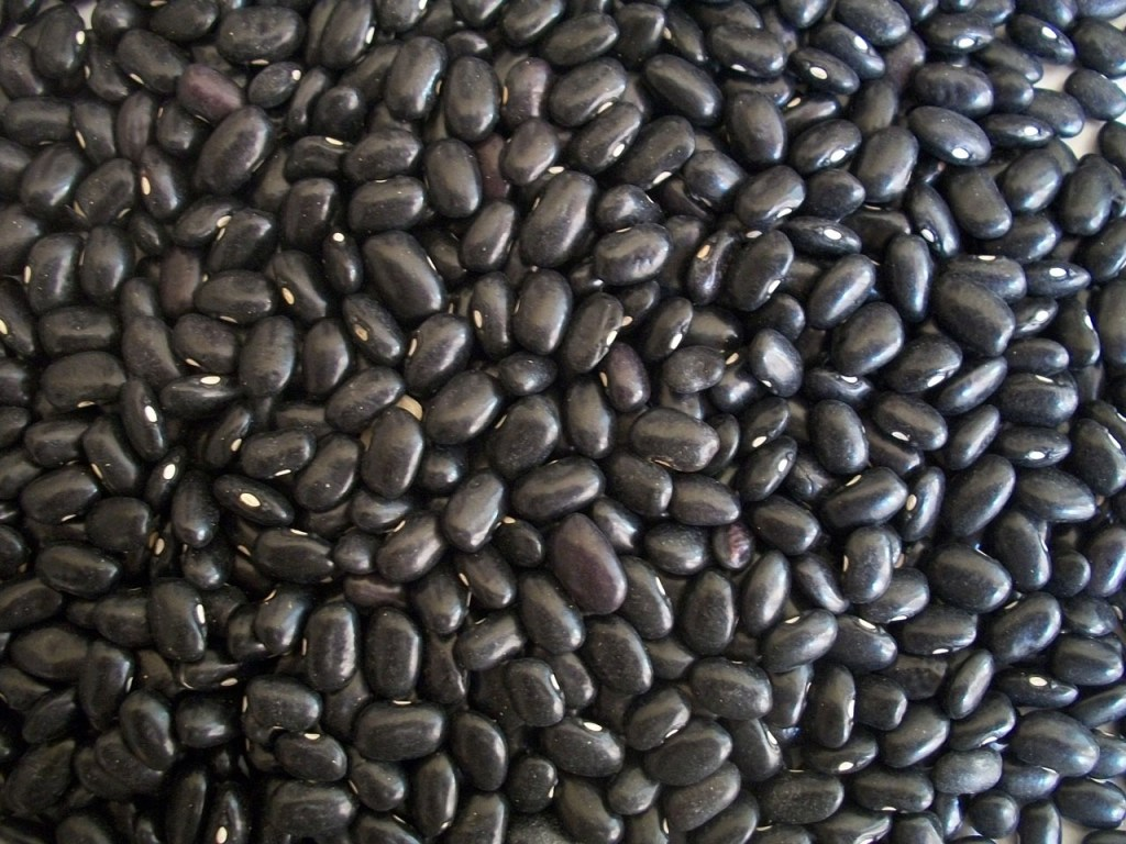 black bean flour for weight loss