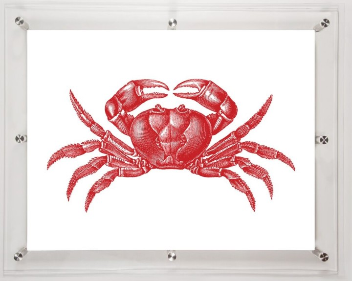 acrylic-framed-crab-wall-art-print-2