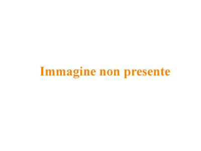 Le 16 Spiagge Pi Belle Del Salento  WePlaya