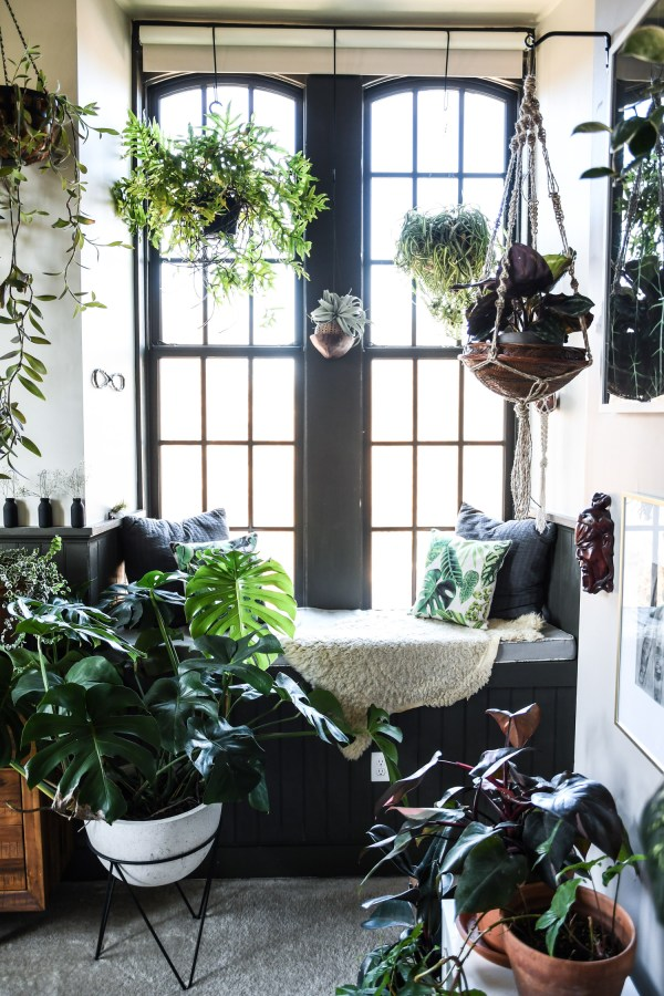 Baltimore Loft Filled Floor-ceiling With Plants