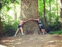 """Check out this enormous tree we found in the Smoky Mountains National Park it's one of the largest known in the park."" - Joel P."