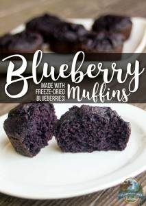 Blueberry Muffins (made with freeze-dried blueberries!)