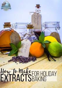 How To Make Extracts For Holiday Baking {7 flavors!}