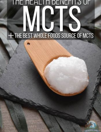 The Health Benefits Of MCTs + The Best Whole Foods Source Of MCTs | You may have seen the term MCTs pop up in various health circles. It's been coined a 'fat-burning fat'. But wait a second! Isn't that an oxymoron? Consuming MCTs has been attributed to speeding up the body's metabolism and burning more fat. Discover the best whole foods source of MCTs here! | WildernessFamilyNaturals.com