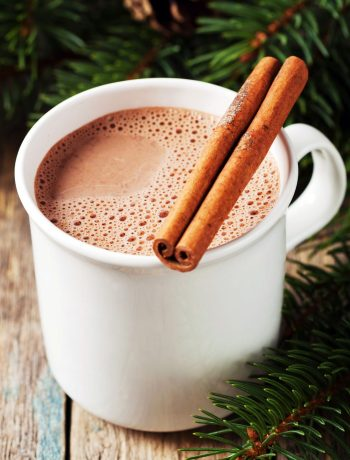 Dairy-Free, Sugar-Free Hot Cocoa | Hot cocoa has its downsides, namely the sugar, fillers, and unpronounceable ingredients in commercial mixes that often contain dairy. My son can't have dairy. My husband needs to watch his sugar intake. What's a mom to do??? THIS recipe is a perfect fit for us! | WildernessFamilyNaturals.com