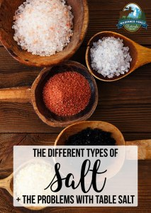 The Different Types Of Salt + The Problems With Table Salt
