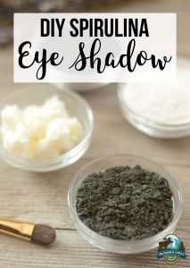 DIY Spirulina Eye Shadow
