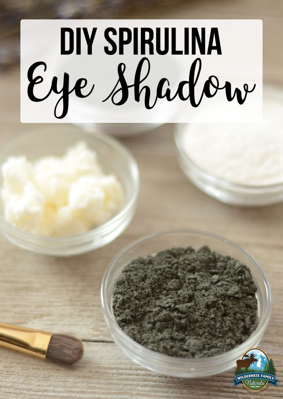 DIY Spirulina Eye Shadow | Homemade eye shadow is a great way to avoid toxins found in most conventional eye shadows. Create a lovely, all-natural green eye shadow with some superfood ingredients. This recipe is non-toxic and totally customizable! | WildernessFamilyNaturals.com