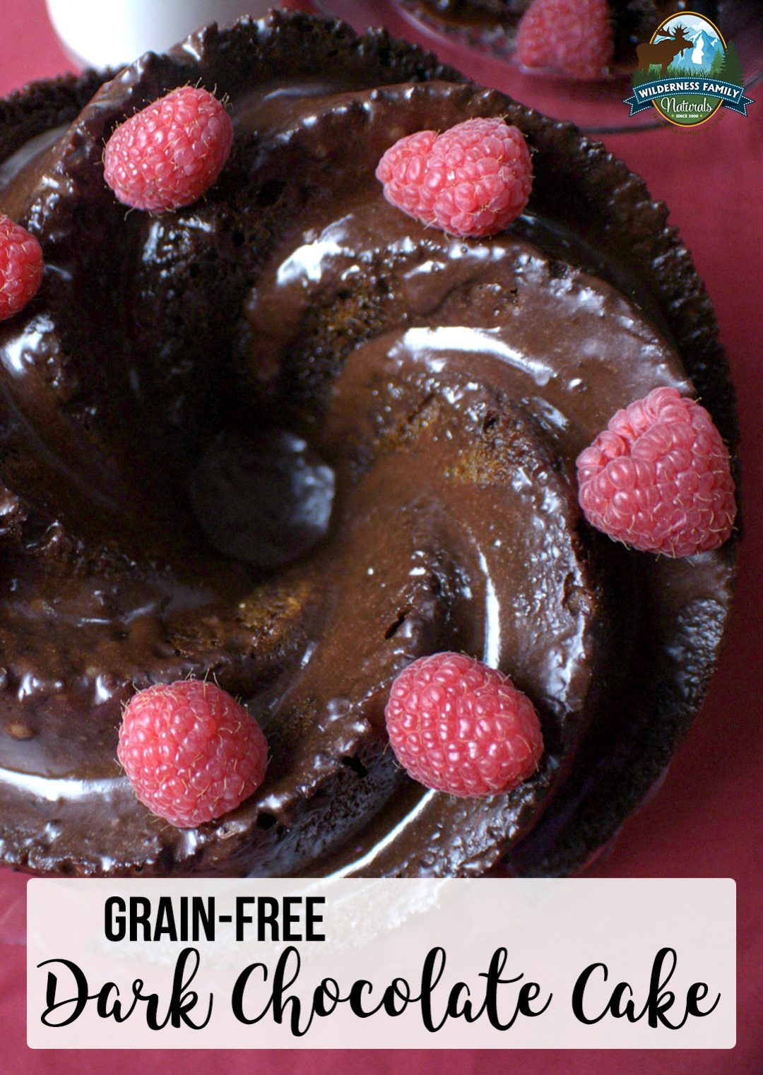 Grain-Free Dark Chocolate Cake | Let's get real about chocolate cake. All that sugar and all those heavy carbs are not healthy. We all know that, right? Skip the wheat, grains, and gluten and try this Paleo-friendly grain-free dark chocolate cake instead! It's light, moist, and oh so chocolate-y! | WildernessFamilyNaturals.com