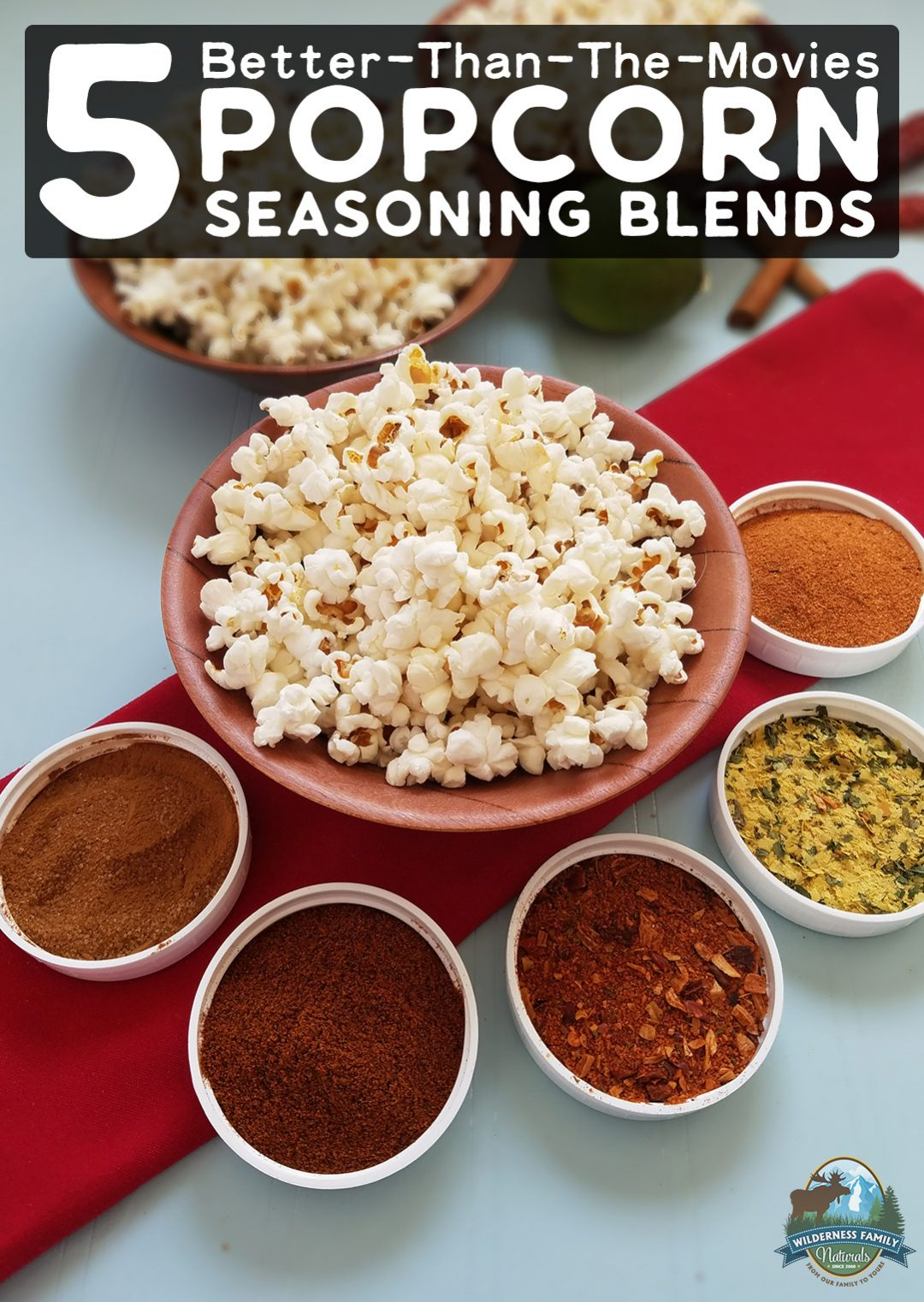 5 Better-Than-The-Movies Popcorn Seasoning Blends | Homemade popcorn is cheap, easy, and a really fun snack for movie night, road trips, parties, or even during the work day. These 5 tasty popcorn seasoning blends will take your buttered popcorn up a notch -- and you won't find anything like them at the movies! | WildernessFamilyNaturals.com