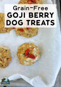 Grain-Free Goji Berry Dog Treats