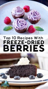 Top 10 Recipes With Freeze-Dried Berries