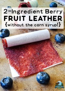2-Ingredient Berry Fruit Leather {without the corn syrup!}