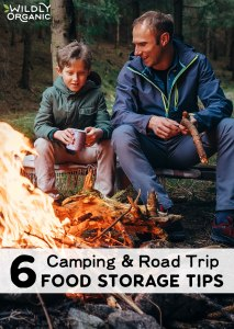 6 Camping & Road Trip Food Storage Tips