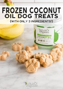Photo of a dog paw shaped dog treat filled with frozen coconut oil, almond butter and bananas.