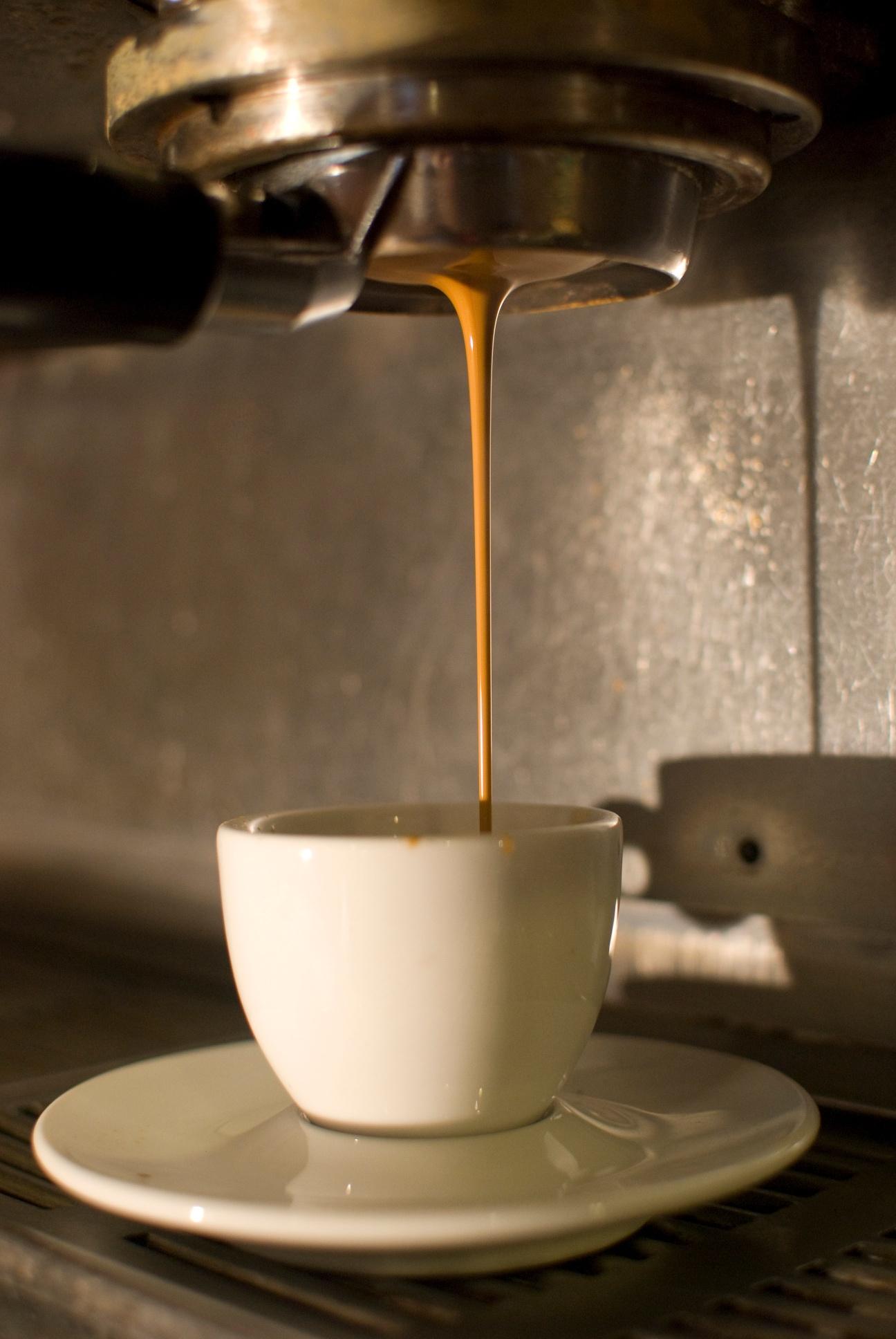 Oso Negro Coffee  WineCollective Blog
