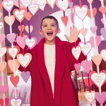 curtain-of-hearts-valentines-day-craft-photo-420-FF0203VALENA04