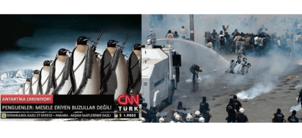 Penguins quickly became a meme for the Turkish protests.