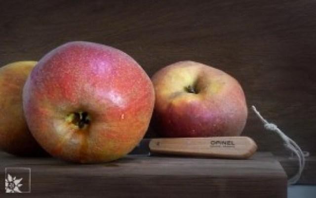 Leicht säuerliche Boskop-Äpfel