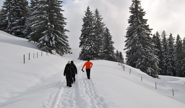winterwanderung-mit-marc