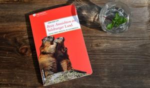buch-beste-aussichten-salzburger-land