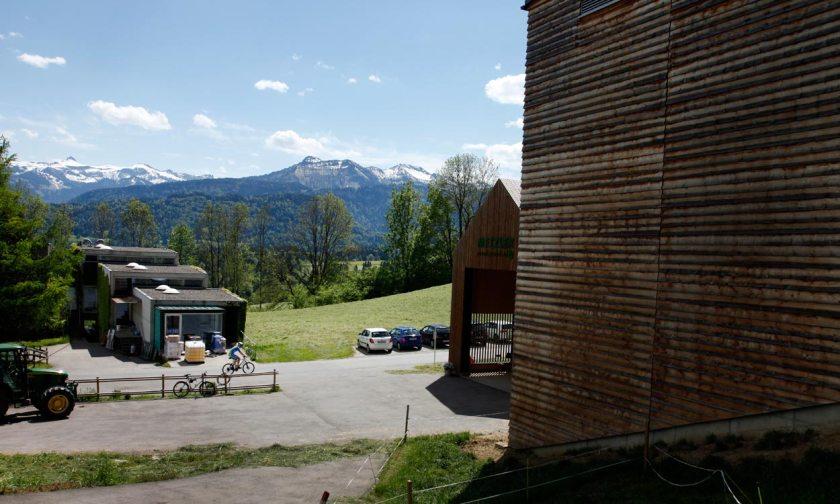 Metzler naturhautnah im Bregenzurwald