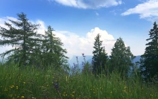 vigilius-ausblick-berge