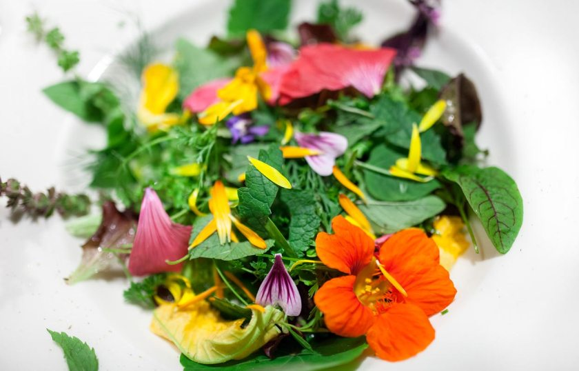 Salat Restaurant Onkel Taa Südtirol