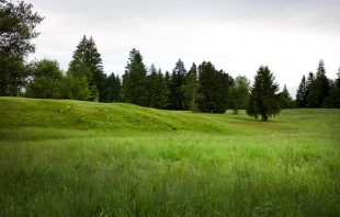 Moore Krumbach - Torfabbau