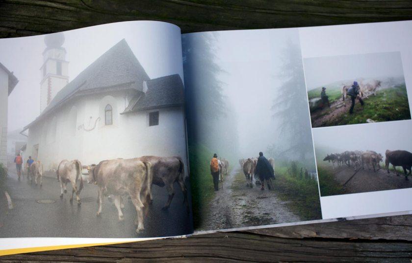 Transhumanz in den Alpen - Edition Raetia