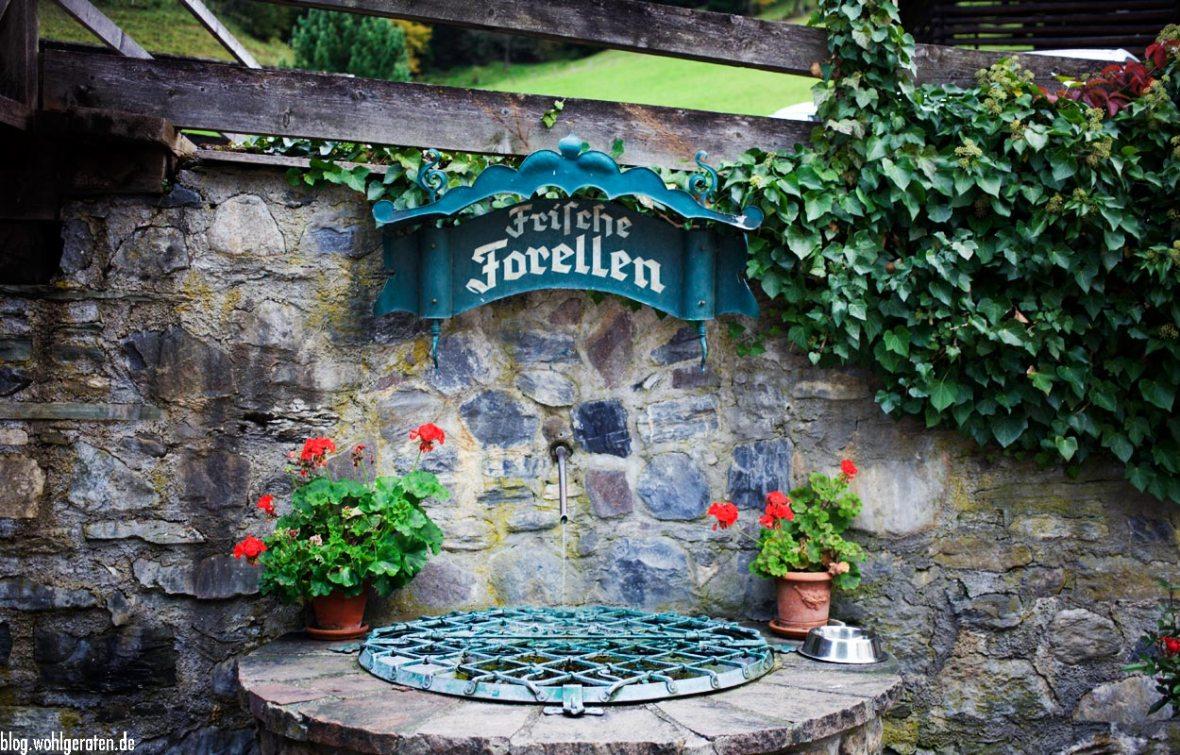Forellenbrunnen Weitmoserschlössl Bad Hofgastein