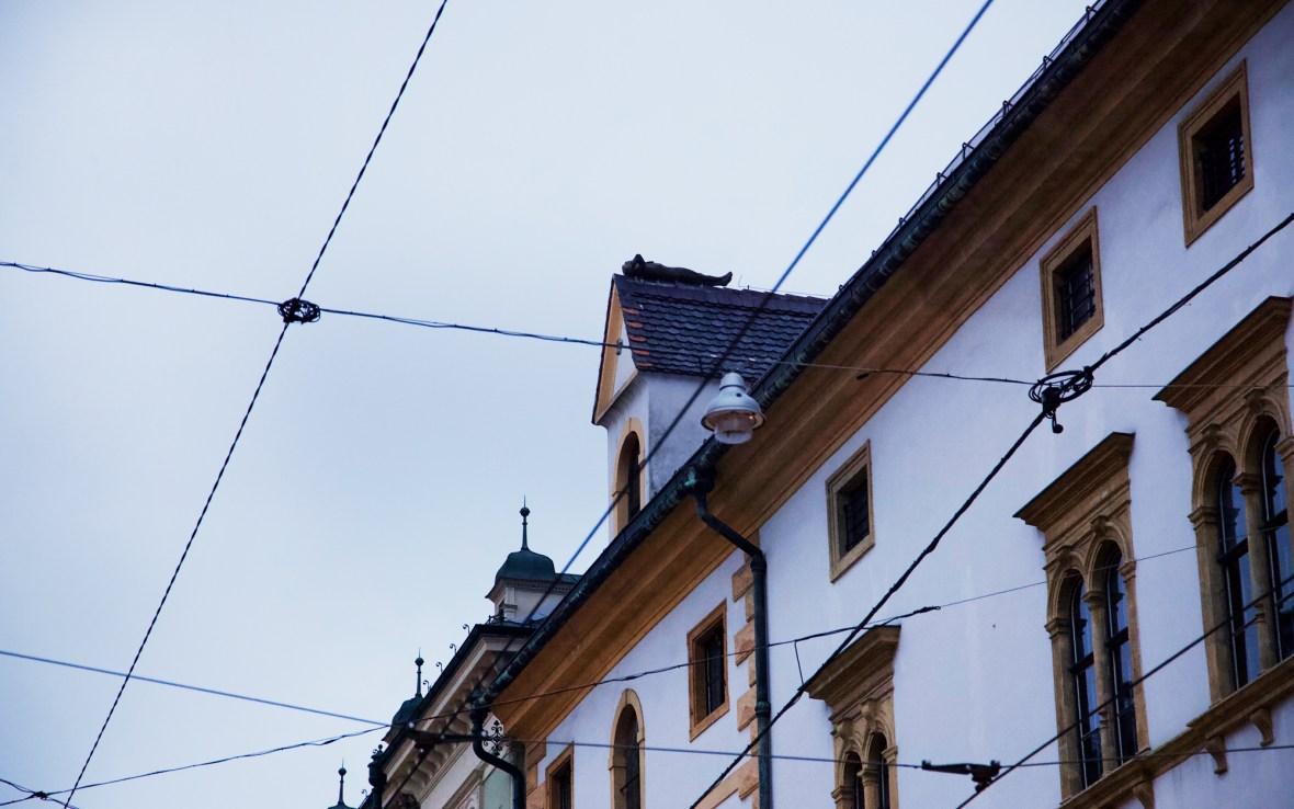 Touristeninformation Graz - Dach