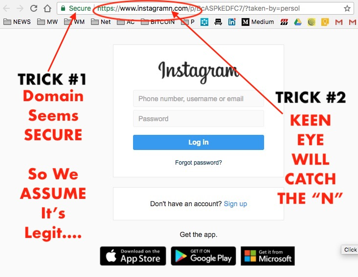 Influencers BEWARE of This NEW Instagram Scam! - Wolf Millionaire