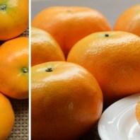 茂谷柑,柑橘,橘子