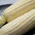 白珍珠水果玉米