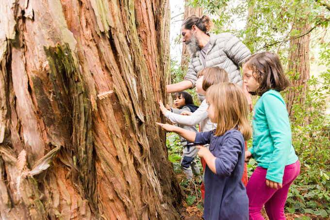 Feeling tree bark at Little Earthlings Forest School