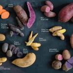 World Potato Recipes