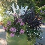 A Spring Flower Arrangement Recipe