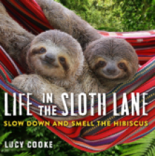 Life in the Sloth Lane Cover