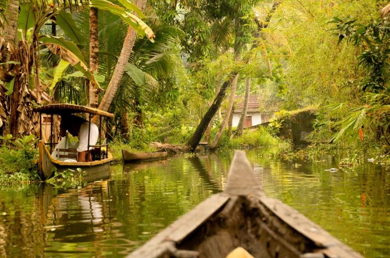 Kerala backwaters from canoe