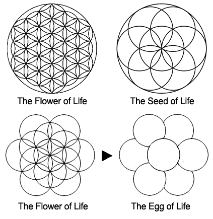 The Flower of Life Symbol • The Awakened State