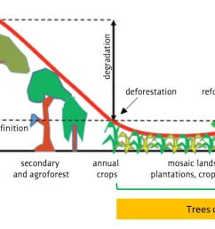 trees on farms play a critical role in providing some of the services forests provide because they maintain and restore high levels of landscape  [ 1569 x 812 Pixel ]